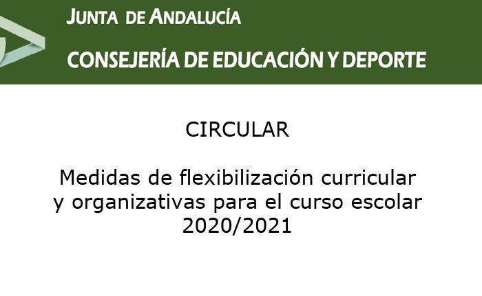 Medidas de flexibilización curricular y organizativas para el curso escolar 2020/2021